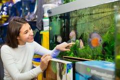 Mädchen, das tropische Fische aufpasst Stockfoto