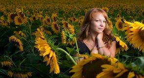 Mädchen in den Sonnenblumen Stockbilder