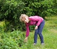 Mädchen im Garten Stockbild