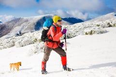 Mädchen mit Hund in den Winterbergen Lizenzfreies Stockfoto