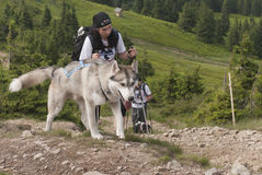 Mädchen und sibirischer Schlittenhund Lizenzfreie Stockbilder