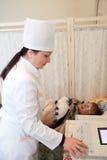 Médecin effectuant l'essai d'ECG Photographie stock libre de droits