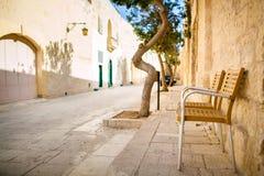 mdina缩小的街道 免版税库存照片