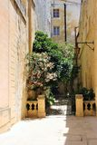 Mdina, Malta, July 2014. A small courtyard with blooming plants in the center of the old town. stock photos