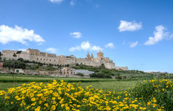Mdina, Malta. Looking towards the historic town of Mdina in Malta Royalty Free Stock Images