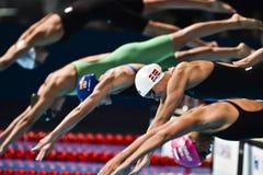 15ème CHAMPIONNATS Barcelone 2013 du MONDE de FINA Photographie stock libre de droits