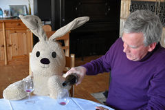 Me and my friend. Having a drink together. Senior man and a big cuddly rabbit sitting at the table and drinking a glass of wine Stock Images