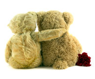 Me and you...... Old teddy sitting with arm around younger teddy Stock Image
