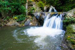 Mea wong water fall in chiangmai , thailand Royalty Free Stock Images