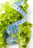Meaasuring tape over fresh lettuce. Measuring tape over fresh lettuce. diet concept Stock Photography