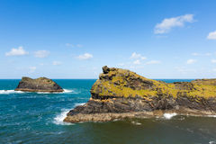Meachard rock Boscastle coast North Cornwall between Bude and Tintagel England UK on a beautiful sunny day Royalty Free Stock Photo