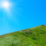 Meadow. Green grass, blue sky and sun Royalty Free Stock Image