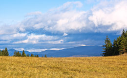 Meadow. With moutains panorama in the background royalty free stock photo