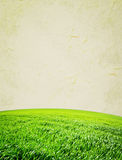 Meadow. Paper texture. Green field in grunge and retro style Royalty Free Stock Photography