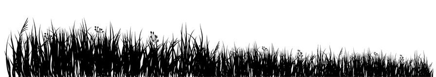 Meadow. Black silhouette of a meadow grass on a white background Stock Photos
