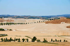 Meadow. The panoram caracteristi of Tuscay Royalty Free Stock Image