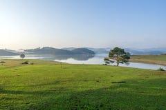 meadow Zdjęcia Royalty Free