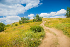 Meadow. Country road through a meadow with beautiful cloudy sky above Stock Photography