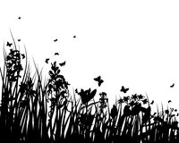 Meadow. Vector grass silhouettes backgrounds with insects stock illustration