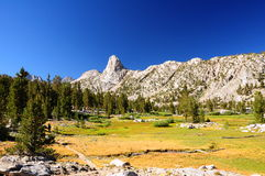 Meadow against mountain wall Stock Image