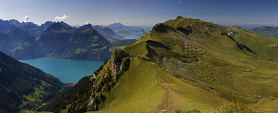 Meadow in the Alps and Lake Vierwaldstättersee Royalty Free Stock Image