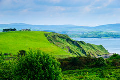 Meadow And Cliff By Sea, Ireland Royalty Free Stock Images