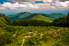 Meadow And View Of Old Rag From An Overlook On Skyline Drive In Shenandoah National Park