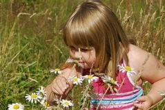 Meadow Annie A. Little girl in meadow smelling flowers Stock Photo