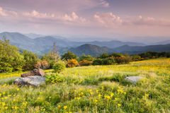 Meadow Appalachian Trail Western North Carolina Royalty Free Stock Image