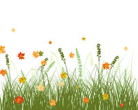 Meadow autumn background Royalty Free Stock Image
