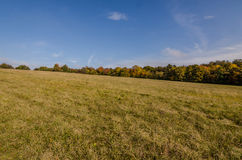 Meadow with autumn landscape Stock Photo