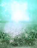 Meadow Background. Fantasy background in the meadow Royalty Free Stock Image
