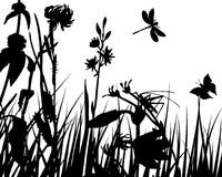 Meadow background. Vector grass silhouettes backgrounds with insects royalty free illustration