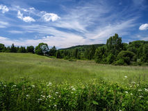 Meadow Royalty Free Stock Photos