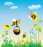 Meadow and bees. Flowering meadow and the bees collecting honey vector illustration