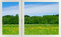 Meadow behind the window Royalty Free Stock Photo