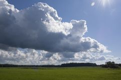 Meadow with big sky white clouds. Meadow with low horizon and big sky with white clouds Royalty Free Stock Photography