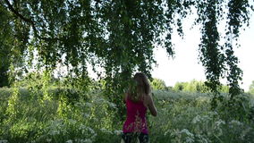 Meadow birch girl Royalty Free Stock Photography