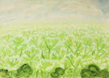 Meadow in blossom, painting Stock Photo
