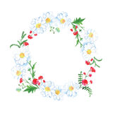 Meadow blossom round vector design frame Stock Photography