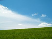 Meadow and blue cloudy sky. Background (E-1 + olympus zuiko 24mm F2.8 Royalty Free Stock Photo