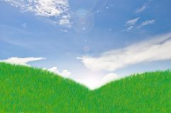Meadow with blue sky Royalty Free Stock Images