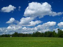 Meadow and blue sky. Green meadow and blue cloudy sky stock photography