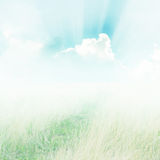 Meadow and blue sky during the day. Royalty Free Stock Image