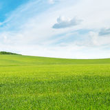 Meadow and blue sky Royalty Free Stock Image