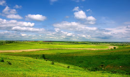 Meadow and blue sky. Royalty Free Stock Images