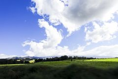 Meadow and blue sky seen from the road to the top of the Haleakala, Maui, Hawaii stock photos