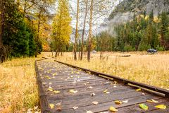 Meadow with boardwalk in Yosemite National Park Valley at autumn Stock Photos