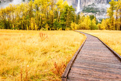 Meadow with boardwalk in Yosemite National Park Valley at autumn Royalty Free Stock Photo