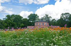 Meadow in a botanical garden stock image